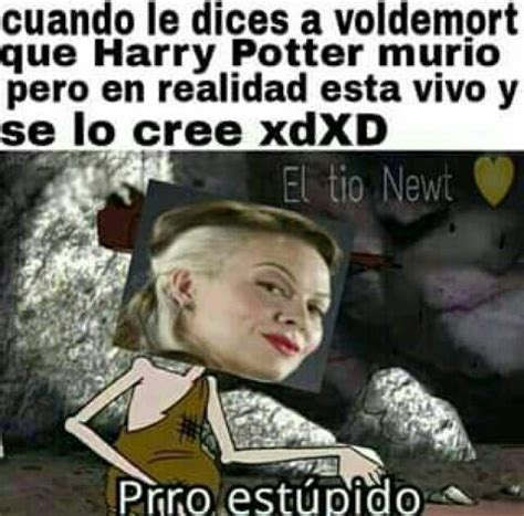 Memes Harry Potter XII | •Harry Potter• Español Amino