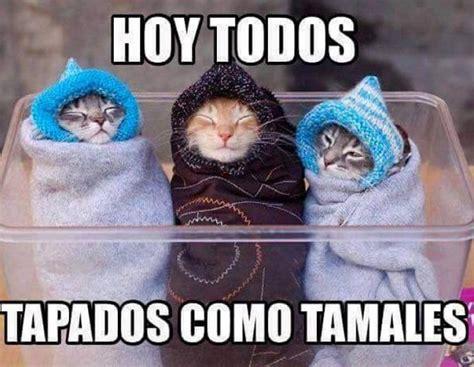 Memes para burlarnos del frío   Chilango