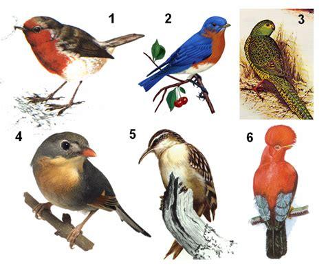 ¡Menudos pájaros estamos hechos!   La Ciencia y sus Demonios