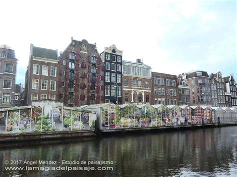 MERCADO de las FLORES en AMSTERDAM. Bloemenmarkt