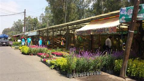 Mercado de las flores, Xochimilco   Picture of Mercado de ...
