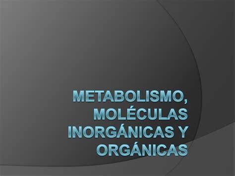 Metabolismo, moléculas inorgánicas y orgánicas