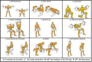 Métodos de entrenamiento para mejorar la fuerza en los ...