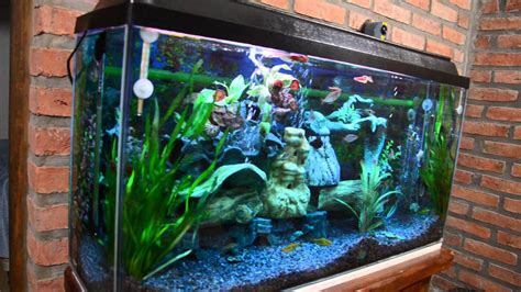 Mi acuario peces de aguas tropicales 150 litros HD  VII ...