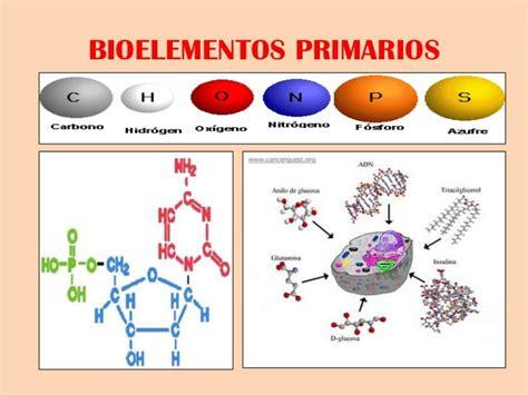 Mi Primer Articulo: Bioelementos Orgánicos Y sus Propiedades