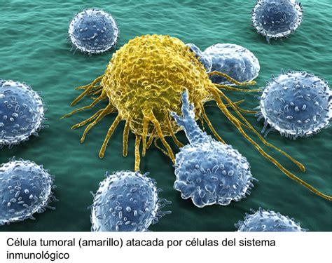 Microbios&co.: Aptámeros inmunomoduladores (I)
