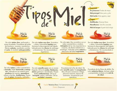 Miel De Abeja Related Keywords   Miel De Abeja Long Tail ...