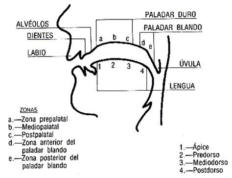 MIGUELRINCON AUDIO DIGITAL   paredon 1