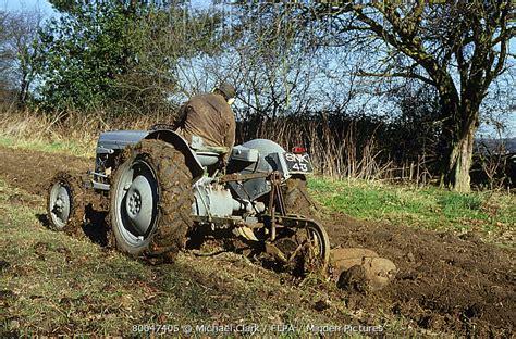 Minden Pictures stock photos - Farm machinery, Ferguson TE ...