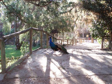 minizoo de Guadalajara   Zoológicos   Av de Pedro Sanz ...