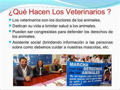 Mitzy guevara alarcon veterinaria