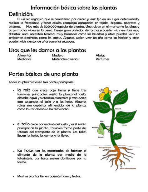 Modulo 11 partes de la planta
