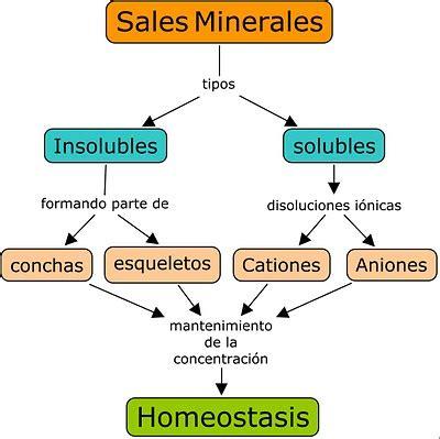 MOLÉCULAS INORGÁNICAS - BIOMOLÉCULAS