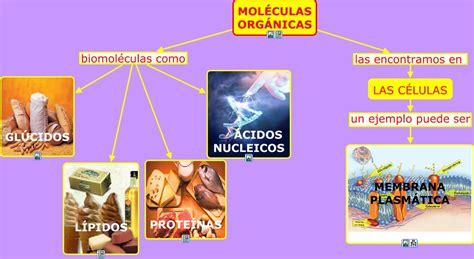 MOLÉCULAS ORGÁNICAS - BIOMOLÉCULAS