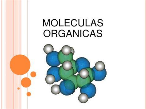 moleculas organicas