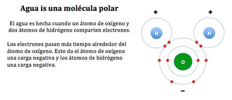 Moléculas polares y no polares - TMJH 8th Grade Science