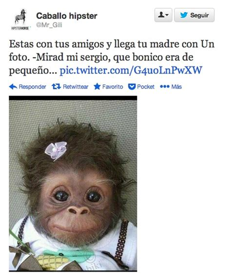 Imagenes De Monos Con Frases Chistosas Imagui