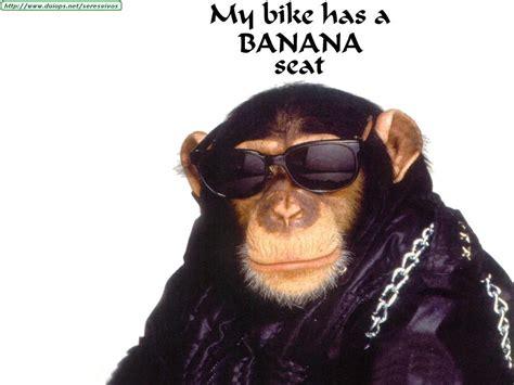 Monos graciosos - Taringa!