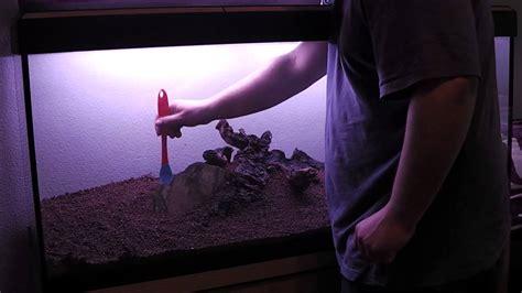 montaje de acuario plantado de 240 litros   YouTube