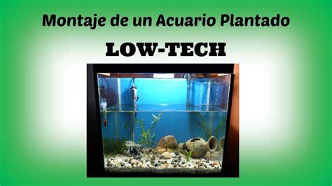 Montaje de un Acuario Plantado Low Tech