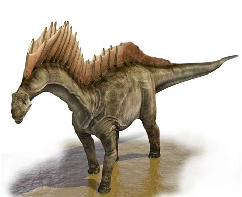 Most Dinosaur Species Are Still Undiscovered – Phenomena ...