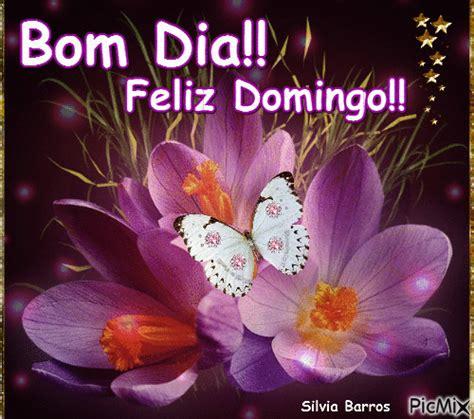 Muito Bom Dia Feliz Domingo WF33 - Ivango