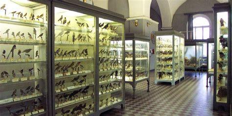 Museo Zoológico de San Petersburgo   Horario y precio