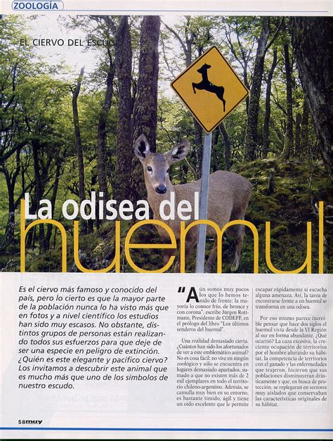 muy interesante reportaje huemul (1) | Evelyn Pfeiffer