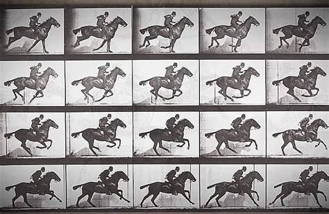 Muybridge Zoopraxiscope | Chocolate FIlms - Video Production