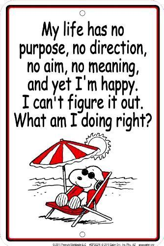 My life has no purpose, no direction, no aim, no meaning ...