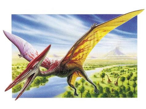 Names of All Flying Dinosaurs | Dinosaurs Pictures and Facts