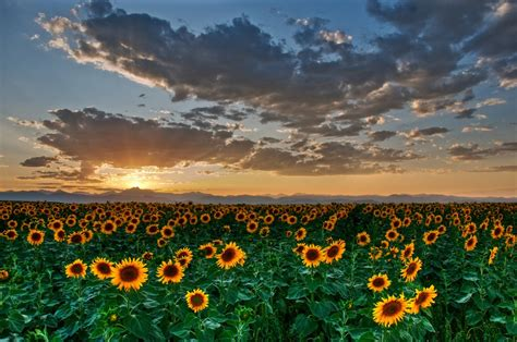 Naturaleza, caminos, nubes , puestas de sol , lagos - Taringa!