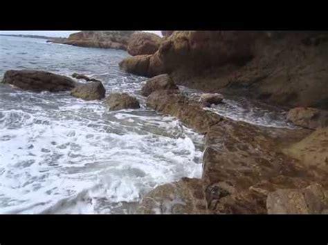 NATURALEZA EN MOVIMIENTO (HD) | Doovi