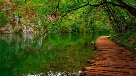 Naturaleza Rio Camino De Madera - Fondos de pantalla HD ...