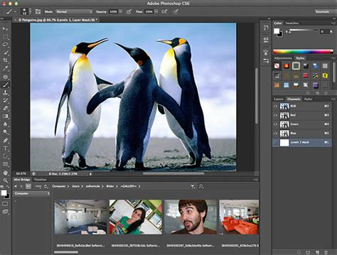 NC Tech Zone: Download Adobe Photoshop CS6 Extended 13.0 ...