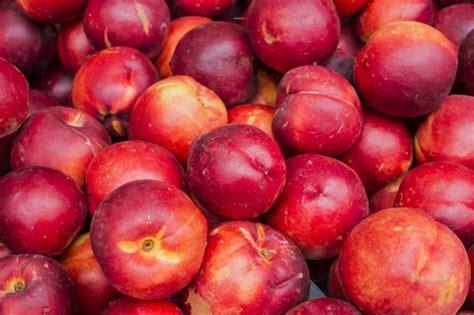 Nectarina | Fruto, variedades, beneficios y propiedades ...