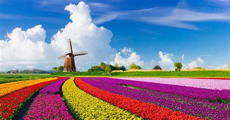 Netherlands Travel Destination Advice | Passport Health