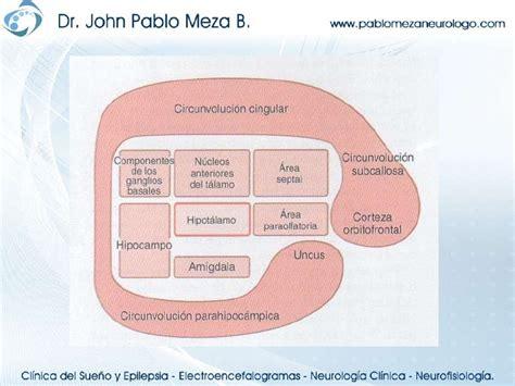 Neurofisiologia sistema limbico conducta y emocion