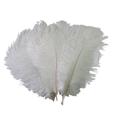 New 10 PCS Wholesale Quality Natural OSTRICH FEATHERS