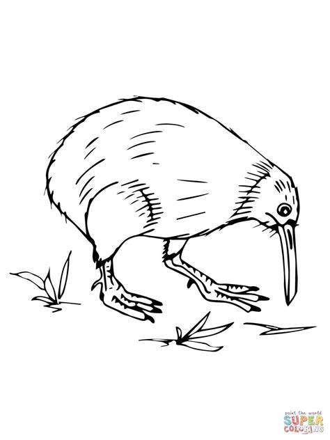New Zealand Coloring Pages   Coloring Pages Ideas & Reviews