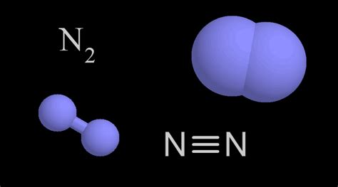 Nitrogen | UCAR Center for Science Education