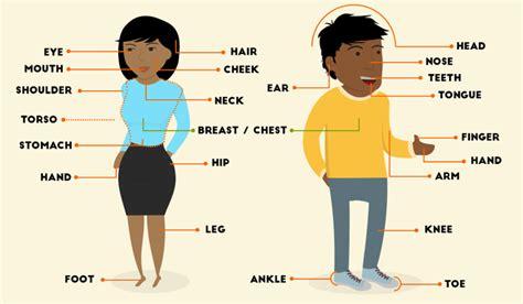 Nivel A1 Creando Palabras - Partes del cuerpo