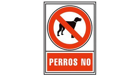 No sin mi perro   ANTENA 3 TV