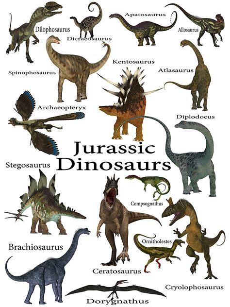 Nombres De Dinosaurios Images   Reverse Search