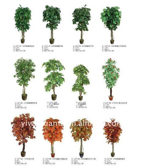Nombres de plantas de arboles - Imagui | MOLDES PARA ...