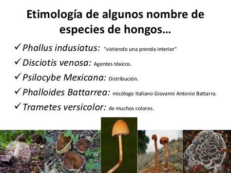 Normas de taxonomia para algas y hongos