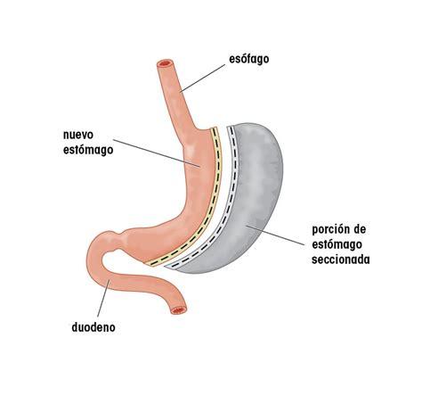 Noticias de Actualidad   Centro Digestivo CMED
