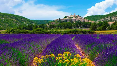 Notre Provence Group