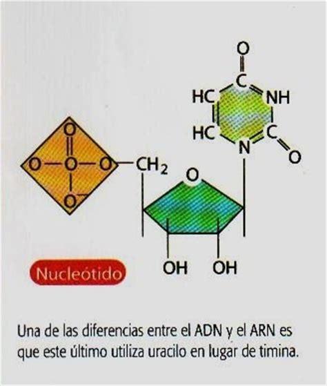 Nuestra Química 2012 primero de bachillerato: CIENCIAS O ...