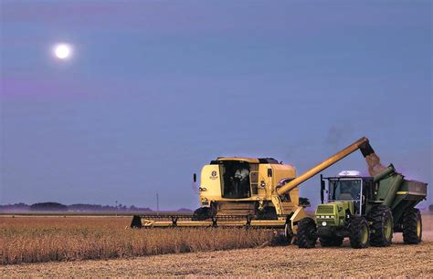 Nuevas subas, algo frenadas, para los granos en las bolsas ...